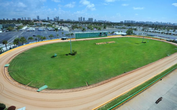 South Florida Greyhound Racing | Mardi Gras Casino